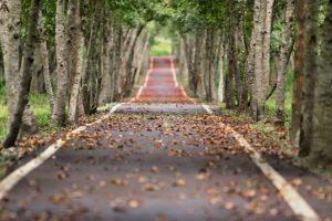 Extraljus till hösten